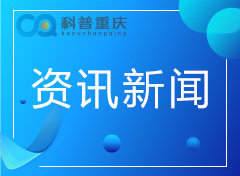 沙坪坝区科协组织参观2019中国国际智能产业博览会
