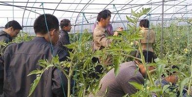 北碚区农技协联合会开展智慧农业培训