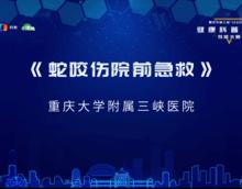 重庆市健康科普讲解大赛-蛇咬伤院前急救