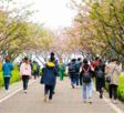 风和日丽春光好,数据谷学子研学忙——重庆园博园联合重庆数据谷中学校开展研学活动